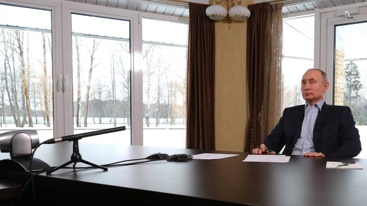 Это не Завидово, деревья нарисованы: Откуда на самом деле общался со студентами Путин?