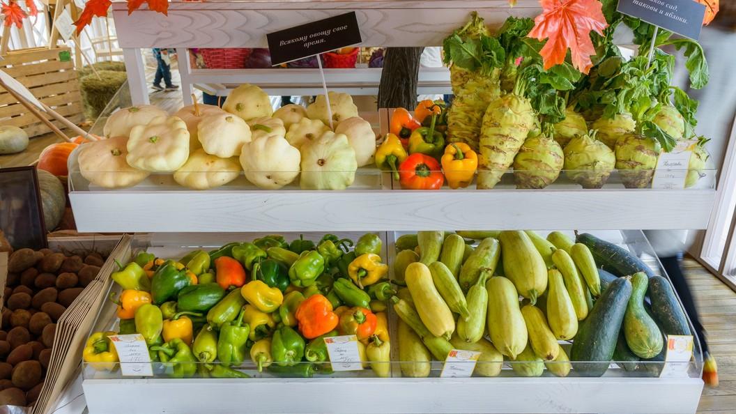 Россия стала активнее покупать за границей овощи