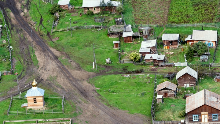 «Да это же майдан незалежности»: Район в Якутии накрыло живым ковром из клопов