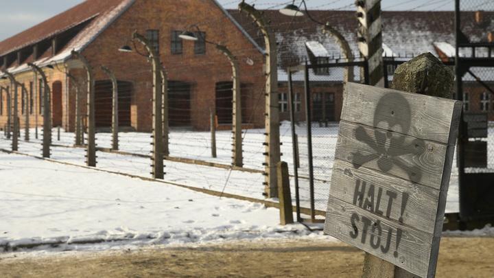 Их раздевали и говорили, что поведут мыться: Впервые опубликованы душераздирающие цветные снимки тысяч узников Освенцима перед смертью