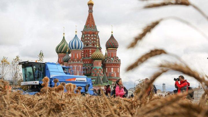 Русской земле нужен хозяин: Помощь может прийти из... Латинской Америки – отец Андрей Ткачёв