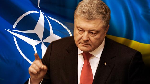 Украинский плацдарм для НАТО: Появятся ли рядом с Новороссией американские военные базы