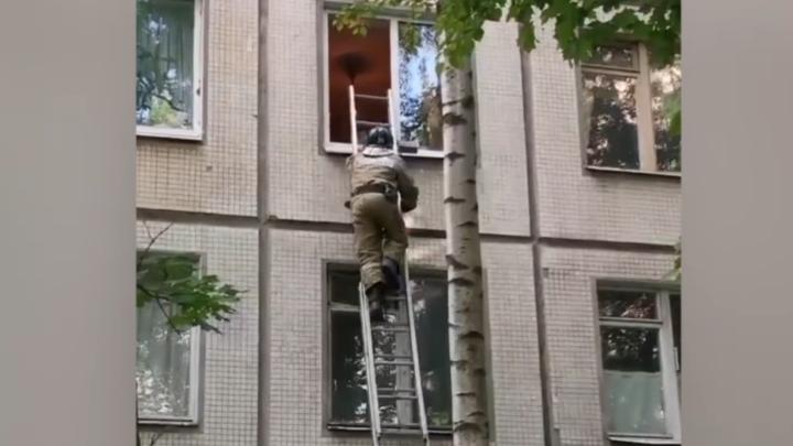 «Плакал и звал маму»: Как спасали пятилетнего ребенка от падения из окна в Петербурге