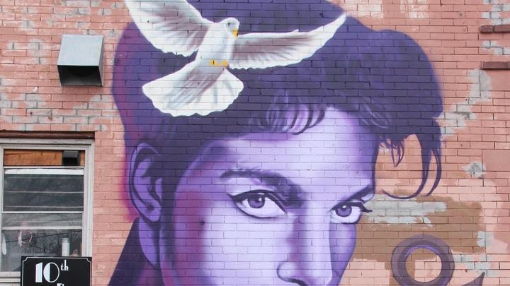 В США решили не искать снабдивших певца Принса смертельным препаратом