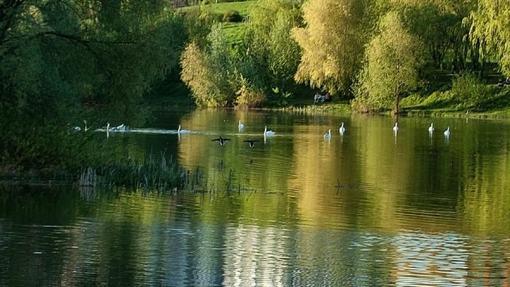 14-летний подросток утонул в озере на Щелоковском хуторе