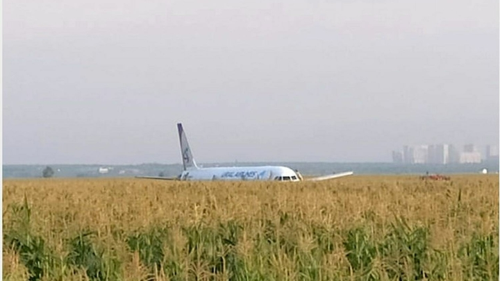 Пилоты-герои пока не могут летать: МАК завершил работу с черными ящиками A321, отчет займет еще 30 дней