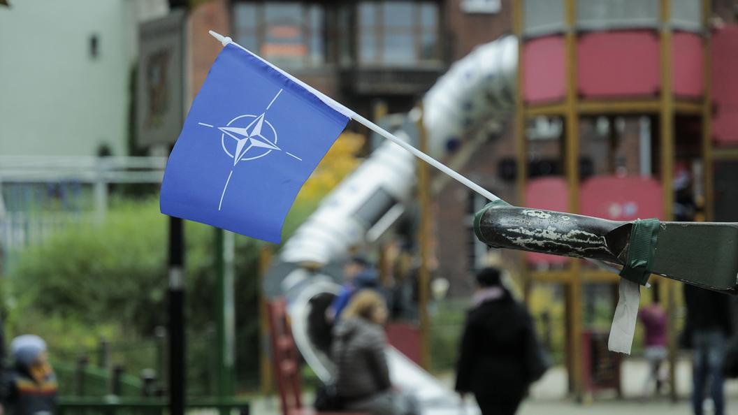 Аналитик НАТО констатировал «заметный масштаб» восстановления армииРФ