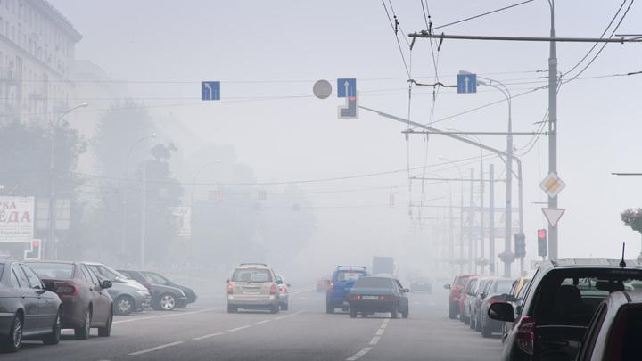 МЧС предупреждает: Ночью и утром улицы Москвы затопит густым туманом