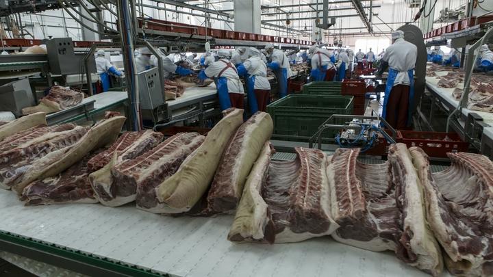 Эмбарго на мясо: США приостановили импорт бразильской говядины
