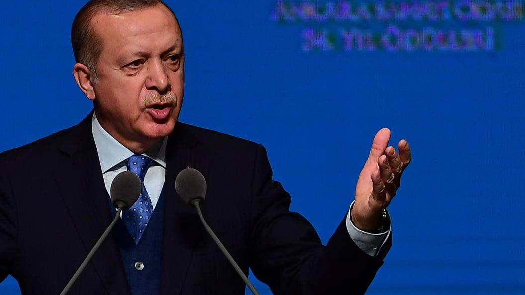 Целью Турции неявляется захват сирийской территории— Эрдоган