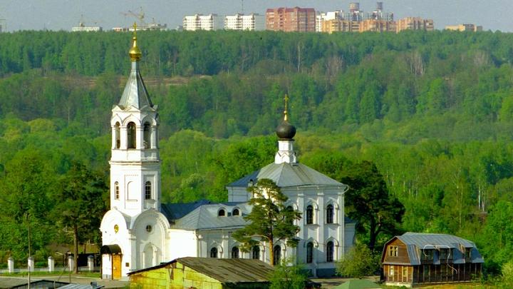 Духовные школы РПЦ Санкт-Петербурга перешли на дистанционное обучение
