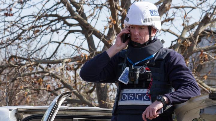 Почему наблюдатели ОБСЕ не нужны в Донбассе? Русский дипломат дал простое объяснение