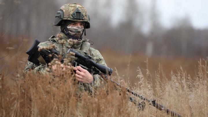 Британию накрыла лихорадка: В лесу бесследно исчез снайпер. Русские пожали плечами