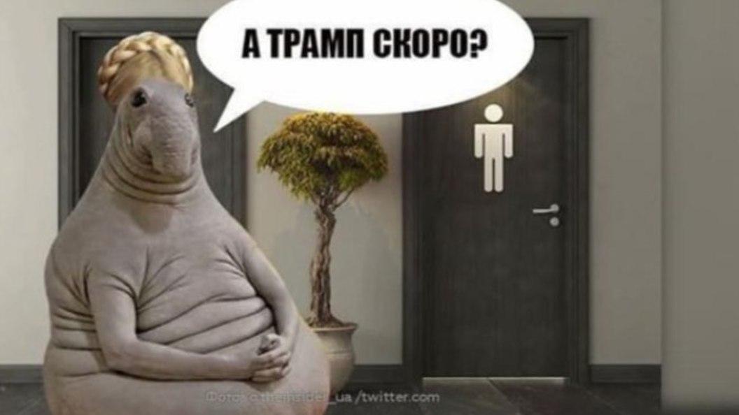 Интернет кипит: Тимошенко подкараулила Трампа у туалета