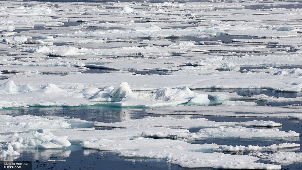 Новак: На шельфе вАрктике 70 млрд тонн нефти и 200 трлнкубометров газа