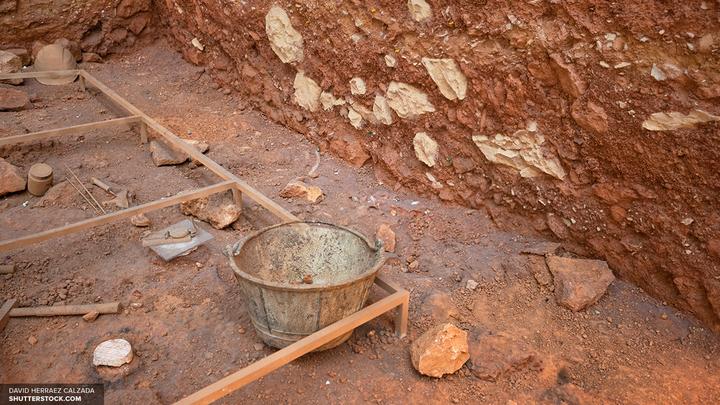 Археологи нашли в Москве древнюю деревянную мостовую