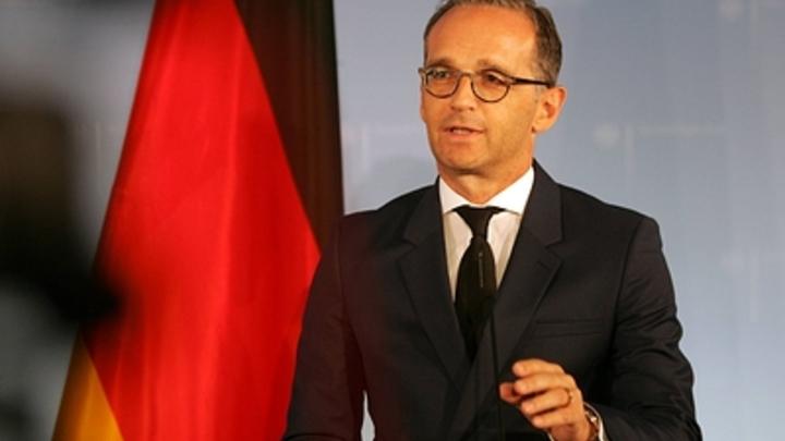 У России ключевая роль по спасению сирийского Идлиба - МИД Германии