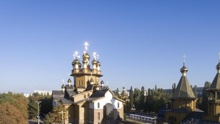 В Русской Церкви прокомментировали совет протоиерея Димитрия Смирнова, как отучить детей от мата