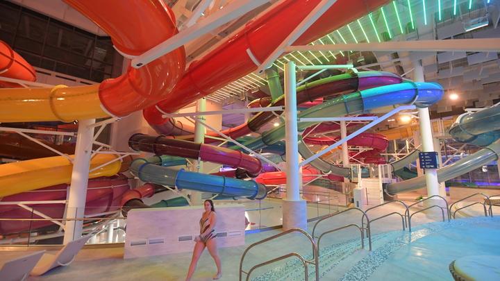 В Ростове решили закрыть аквапарк Осьминожек, принадлежавший семье Бабаевых