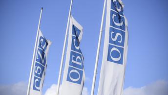 ОБСЕ потребовала от Киева объясниться за недопуск граждан России к голосованию