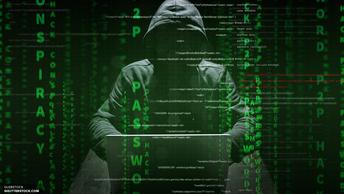 Выглядит достоверно: Сноуден оценил новый архив ЦРУ от WikiLeaks
