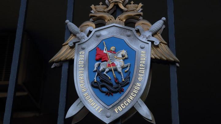 СК рассказал, кто виноват в падении мраморной плиты на школьника в Санкт-Петербурге