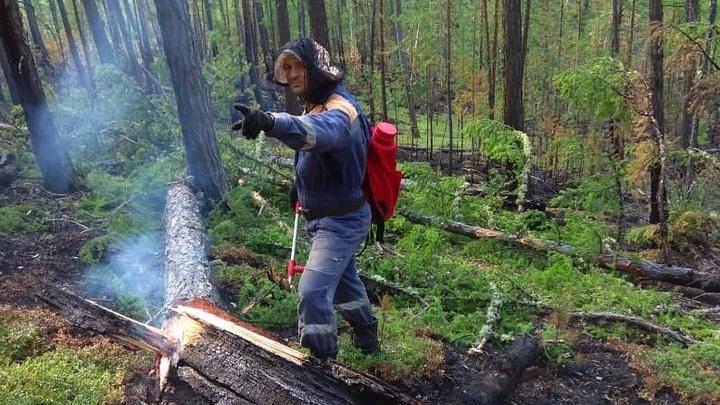 В лес ни шагу: До конца августа в Ростовской области продлён запрет на посещение лесах