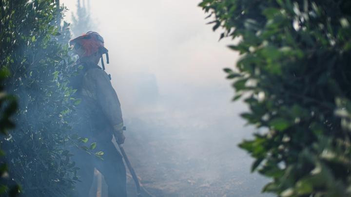 Экстренное предупреждение: на территории Кубани объявлен 4 класс пожароопасности