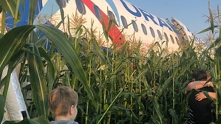 Чудо в русской ниве: Ювелирная посадка А321 вызвала неподдельное восхищение западных пользователей