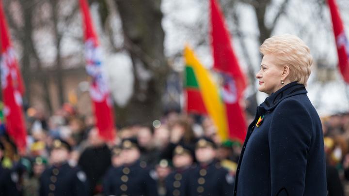 Гадить надо отучать: Политолог пожалел об отсутствии жесткой реакции на санкции Литвы