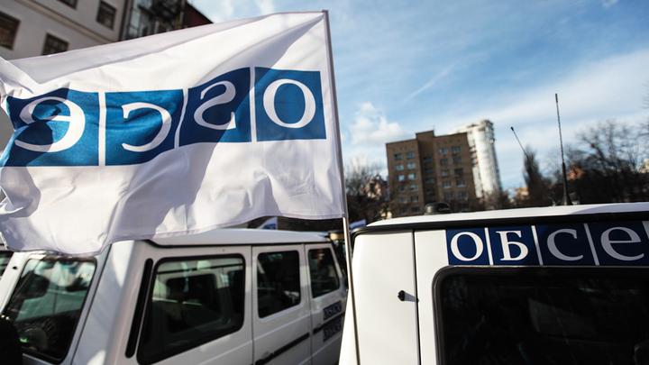 Джихади Джулиан помогает Украине дискредитировать ОБСЕ