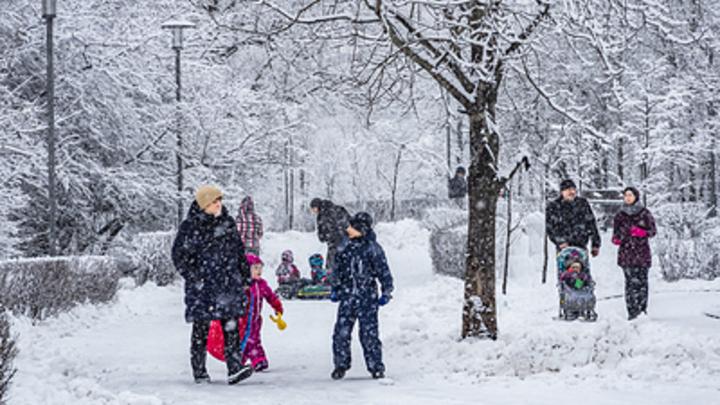 Ждать ли суперхолода в феврале? Вильфанд предсказал необычность погоды