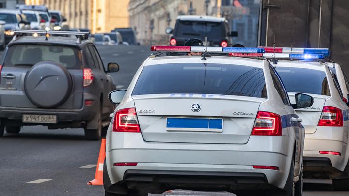 В Петербурге остановили Lexus забитый поддельными справками об отсутствии COVID