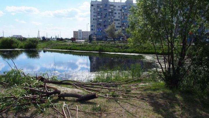 В Челябинске на пустыре вокруг пруда сделают сквер