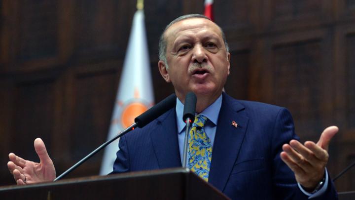 Трудный выбор Эрдогана: Мир в Идлибе или сирийский Курдистан