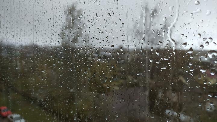 В выходные на Кубани сохранится дождливая погода