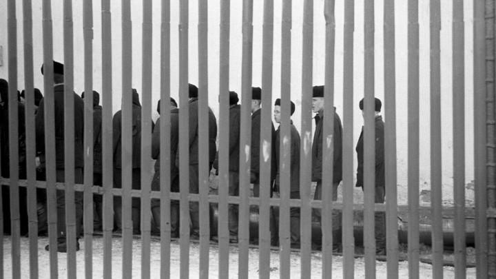 Не звони мне, не звони: В тюрьмах предложили глушить сотовую связь - СМИ