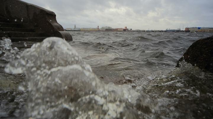 Хочешь пей, хочешь - стирай...: Появилось видео из затопленного ливнем дома на Васильевском острове
