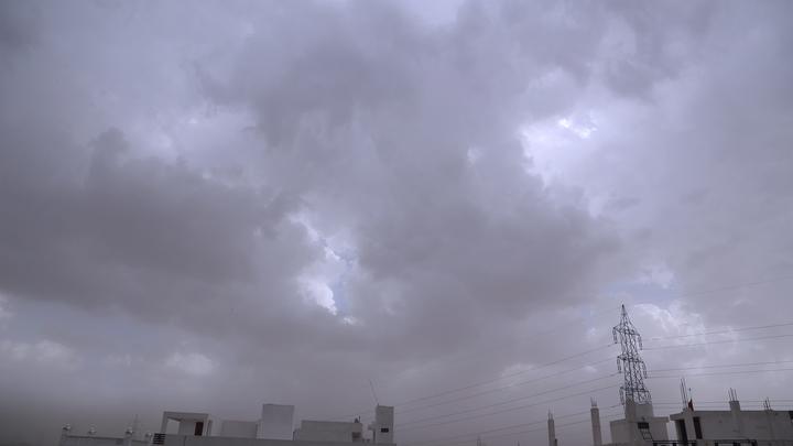 Прохладно и без осадков: Погода в Новосибирске на 27 июля