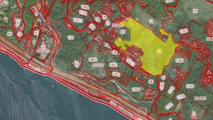 Золотые 190 га: В Сочи продают земельный участок почти за 10 млрд рублей
