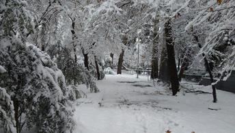За одну ночь Тегеран оказался полностью погребен под снегом - фото, видео