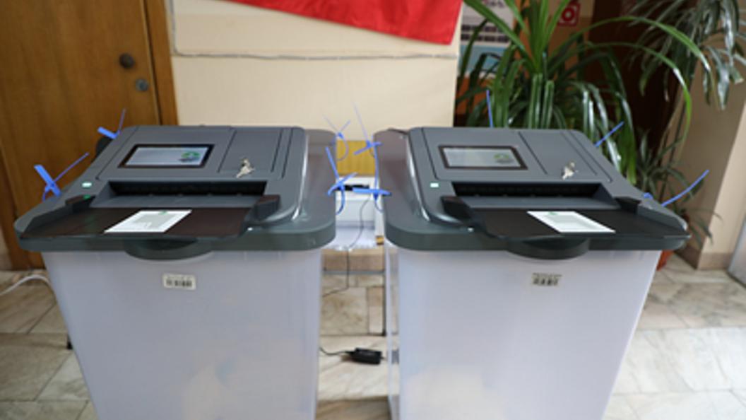 Избирательный участок вБурятии посетил медведь сгражданской позицией