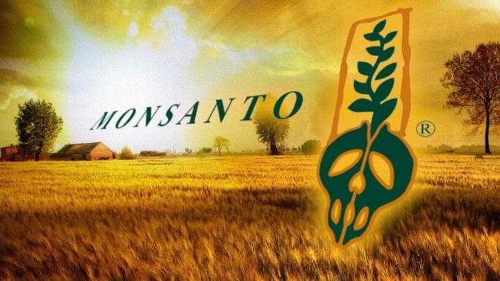 Аграрии в панике: ФАС дала добро на захват России ГМО-монстром