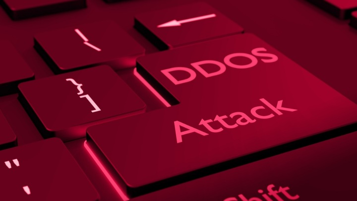 Прихлопнули рассадник: Как закрывали проект по организации DDoS-атак