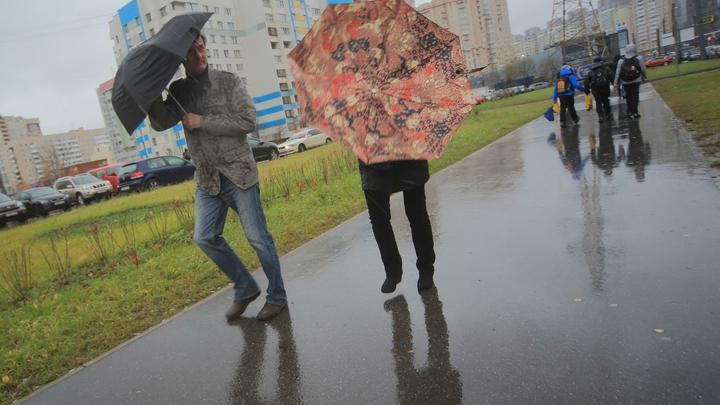 В Санкт-Петербурге объявлено штормовое предупреждение: закрыты сады и скверы