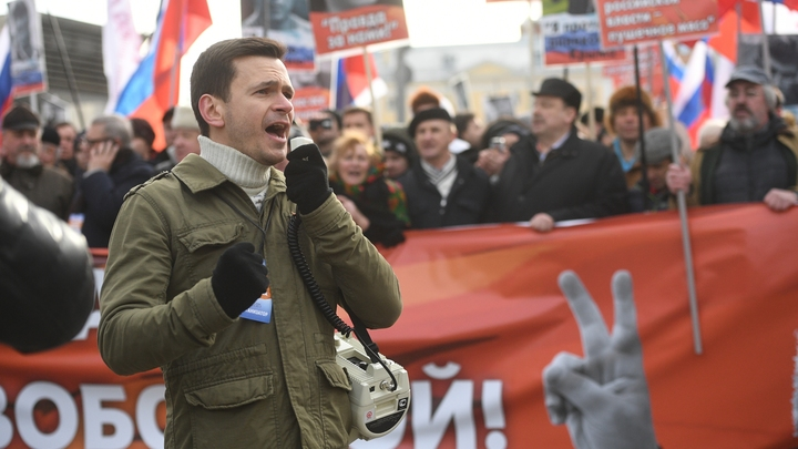 Дорвался до власти: Оппозиционер и борец за справедливость Яшин выписывает премии самому себе