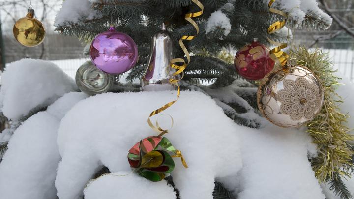 Перед новогодними каникуламиРоссии добавили рабочих дней