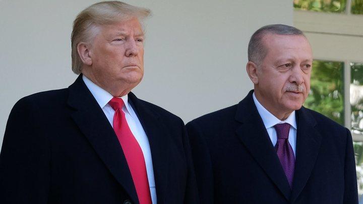 Трамп предостерёг Эрдогана: Иностранное вмешательство осложняет ситуацию в Ливии
