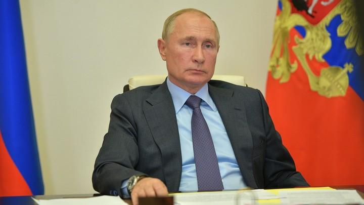 Решение Путина вызвало панику в Финляндии: Запрет на вывоз леса-кругляка обрушил акции