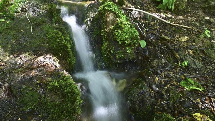Кубань заняла первое место по ЮФО в Национальном экологическом рейтинге